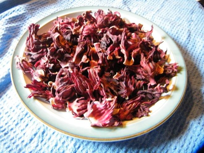Sudanese karkadeh (hibiscus)