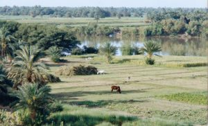 The Nile, near Kerma, Northern Sudan